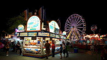 #10 Parade & Festival The largest fair in Florida, Miami-Dade County Fair & Exposition is also one of the most successful county fairs in the U.S. Next: March 14-31, 2013