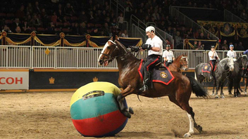 #4 Trade Show & Convention A horse show, rodeo, and the agriculture competition, the Royal Agricultural Winter Fair saw just under 300,000 guests flock to Exhibition Place last year. In 2012 the fair will celebrate its 90th year. Next: November 2-11, 2012