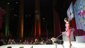 #1 Fashion & Beauty Event The popular event continues to grow, attracting 1,700 guests and big-name sponsors such as Audi; for its fifth year the event challenged its runway walkers to boost fund-raising, and the $700,000 total smashed records. Next: April 13, 2013