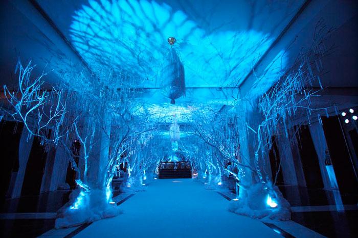 25 Winter,Theme Party Ideas Decor, Entertainment, Catering