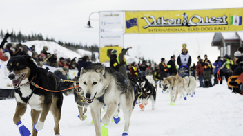 #11 Sports Event Fairbanks, Alaska, to Whitehorse, Yukon Following the historical Gold Rush trail, the 1,600-kilometer dogsled race takes participants through some of the coldest and most unpredictable weather conditions on the continent. As many as 50 dog teams, consisting of one human musher and 14 canine athletes, compete for a purse of about $150,000. Next: February 1, 2014