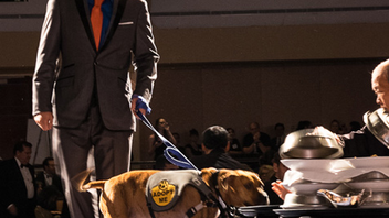 #23 Benefit This year the pet-friendly benefit counted about 1,000 human guests and 500 dogs in attendance at the Washington Hilton and raised nearly $625,000 for the city's animals. Next: June 2015