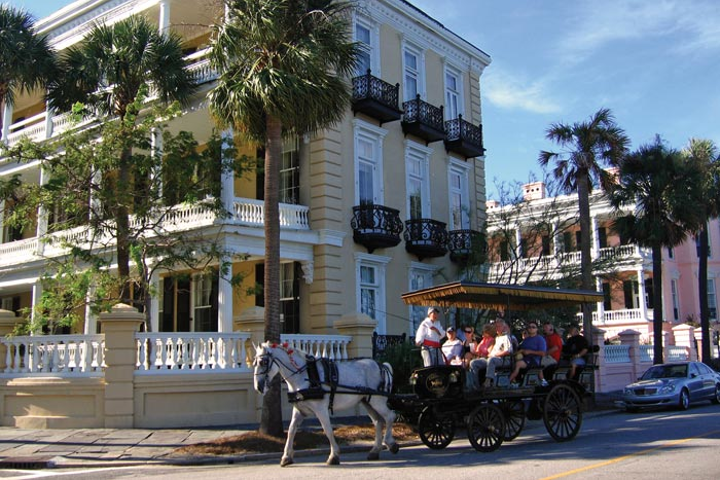Guests can enjoy guided horse- and mule-drawn tours of Charleston's historic district.