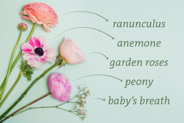Flowerimage Webstory 31716cs2