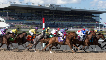 #3 Sports Event (up from #5) In 2016, attendance at Canada's most prestigious horserace grew to 37,000 and the TV audience tripled to 315,000. This year, the festival doubled to two days, including Canada Day, and Stella Artois returned to present the Hats & Horseshoes Party. Next: July 1, 2018