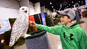 #6 Trade Show & Convention Almost 68,000 woodsy types hit the International Centre in 2017 when the four-day event celebrated its 70th anniversary. The number of exhibitors increased by 15 percent to 340, and show organizers are planning for an increase again in 2018. Next: March 14-18, 2018