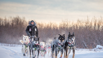 Fairbanks, Alaska, to Whitehorse, Yukon #9 Sports Event (up from #10) The purse for the 1,600-kilometer (1,000-mile) dogsled race grows by another $5,000 (U.S.) to at least $125,000 (U.S.) in 2018. The 2017 race comprised 22 mushers and was sponsored by the City of Fairbanks and Tourism Yukon. Next: February 3, 2018