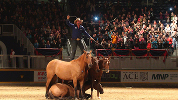 Toronto #3 Trade Show & Convention Toronto's urban country fair turns 95 in 2017, expecting 300,000 visitors, 5,000 animals, and 300 vendors. Australian horseman Guy McLean entertains on opening weekend, and Watchmaker Longines returns as a sponsor. Next: November 3-12, 2017