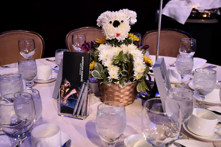The 2018 American Humane Hero Dog Awards took place September 29 at the Beverly Hilton. In addition to dog adoptions and awards for the country's bravest canines, the event featured on-theme centerpieces by Sherman Oaks-based floral designers Mulberry Row.