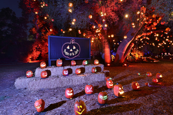 The inaugural Nights of the Jack takes place at King Gillette Ranch in Calabasas until November 4. Some 5,000 hand-carved jack-o-lanterns stretch along the half-mile trail.