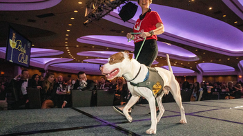 #22 Benefit (up from #23) This black-tie gala for dogs and their owners raised $750,000, surpassing last year's total and the 2018 goal of $715,000, all benefiting the Humane Rescue Alliance. Held at the Washington Hilton, the event drew 1,100 guests for a reception, silent auction, and seated vegan dinner. Former Senators Bob and Elizabeth Dole took part in the event, as did Nationals pitcher Max Scherzer and his wife, Erica May-Scherzer. Sponsors who committed more than $15,000 include EJF Philanthropies, U.S. Chamber of Commerce Foundation, Louie and Ralph Dweck, TTR Sotheby's International Realty, and the National Association of Manufacturers. Next: October 10, 2019