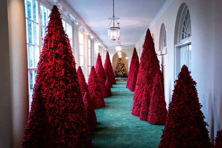 The White House holiday decorations feature a hallway of 45 red Christmas trees, created with Styrofoam and cranberries.