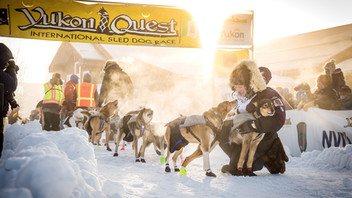 Fairbanks, Alaska, to Whitehorse, Yukon A lack of snow forced mushers to truck their dog teams for one leg of the 1,000-mile 2019 race, which grew to 30 participants from last year's 26. Tourism Yukon and the City of Fairbanks remained two of the key sponsors. Next: February 1, 2020