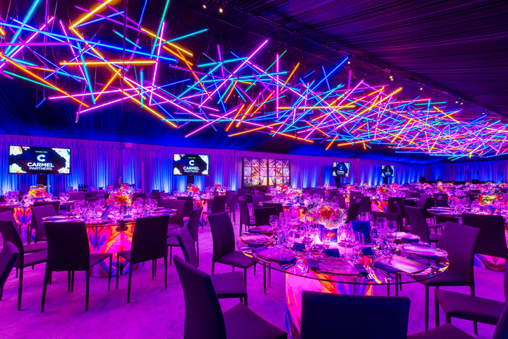 Got Light (@gotlightsf) used 642 LED tubes to create an eye-catching design at the California Academy of Science's 2017 Big Bang Gala.