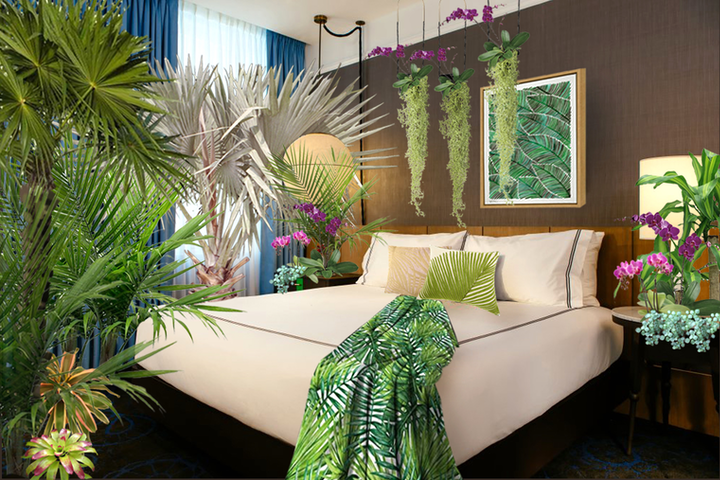 The Palm Room will have a tropical feel, replete with live plants and palm-leaf-print pillows.