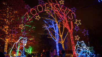 New to the list Each winter, the Smithsonian's National Zoo opens its gates at night for its lights festival, which draws thousands of locals. For 31 nights, the premises is covered with more than half a million LED lights. While no live animals are on display, various animal-replica structures line the walkways. Next: November 29, 2019-January 1, 2020